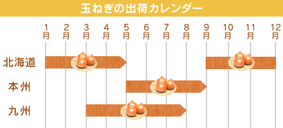 玉ねぎの出荷カレンダー