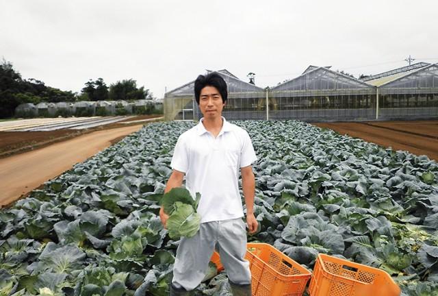201807-eco-cabbage-img01